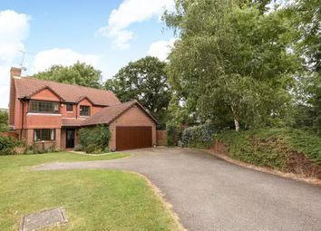 Thumbnail 4 bed detached house to rent in Woodward Close, Winnersh