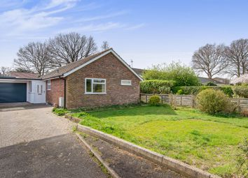Thumbnail 3 bed detached bungalow for sale in St Laurence Avenue, Brundall, Norwich