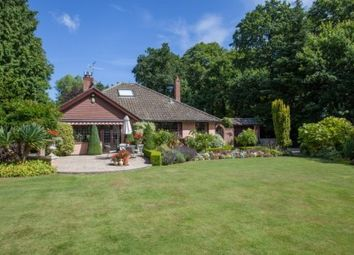Thumbnail 4 bed bungalow for sale in Cromer Road, High Kelling, Holt