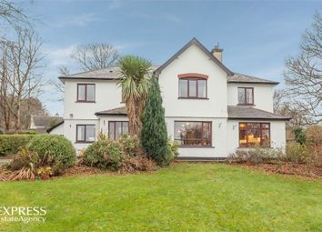 Thumbnail 6 bed detached house for sale in Drumavoley Park, Ballycastle, County Antrim