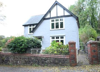 Thumbnail 4 bed detached house for sale in Pisgah Hill, Talywain, Pontypool
