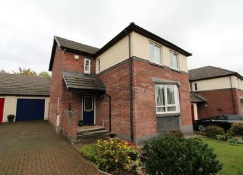Thumbnail 4 bed detached house for sale in Rivington Park, Appleby-In-Westmorland, Cumbria
