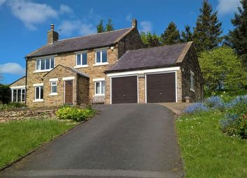 Thumbnail 4 bed detached house for sale in Thorngrafton, Hexham