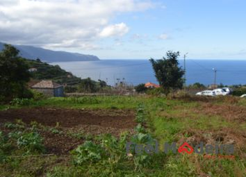 Thumbnail Land for sale in Primeira Lombada, Ponta Delgada, São Vicente