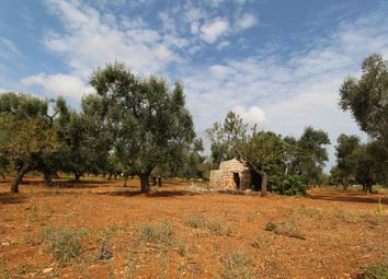 Thumbnail Land for sale in Contrada Aspri, Carovigno, Brindisi, Puglia, Italy