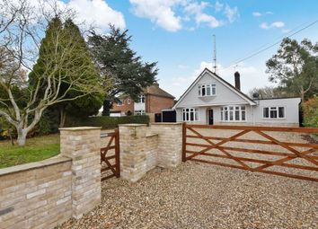 Thumbnail 4 bed bungalow for sale in Gosfield Road, Braintree