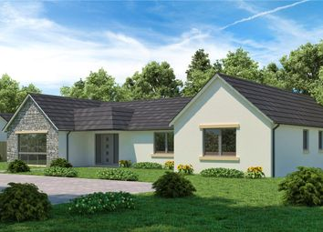 Thumbnail 3 bedroom bungalow for sale in Viewfield House, Brucefield Road, Rosemount, Blairgowrie