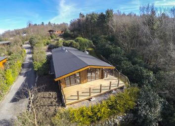 Thumbnail 3 bed lodge for sale in Lodge 6, Alpine Meadow, Kippford Dalbeattie