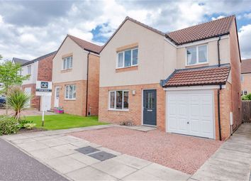 Thumbnail 4 bed detached house for sale in Sisman Place, Larbert