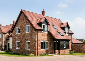 Thumbnail 4 bed detached house for sale in Symonds Close, Norwich