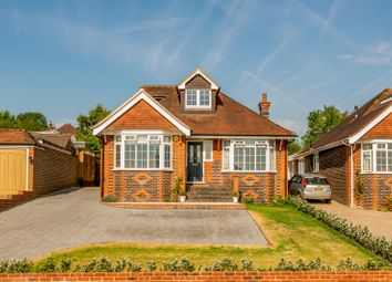 Thumbnail 5 bed detached house to rent in West Meads, Guildford
