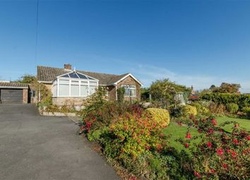 Thumbnail 3 bed bungalow for sale in Mount Pleasant, Market Rasen, Lincolnshire