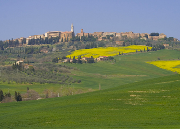 Thumbnail 4 bed country house for sale in Casale La Margherita, Pienza, Siena, Tuscany, Italy