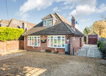 Thumbnail 2 bed bungalow for sale in Witley, Godalming, Surrey