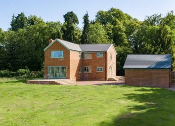 Thumbnail 5 bed detached house to rent in Letton, Hereford, Herefordshire