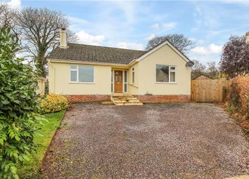 Thumbnail 3 bedroom detached bungalow for sale in Wellmead, Kilmington, Axminster, Devon