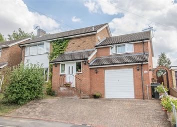 Thumbnail 4 bed detached house for sale in Butlers Way, Great Yeldham, Halstead