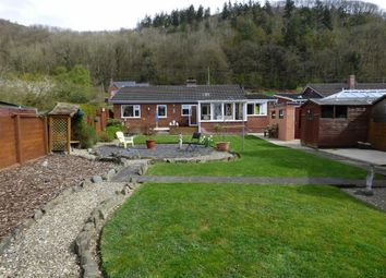 Thumbnail 3 bed detached bungalow for sale in Pantyffridd, Berriew, Welshpool