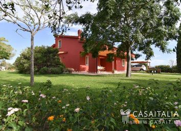 Thumbnail 3 bed villa for sale in Grosseto, Toscana, It