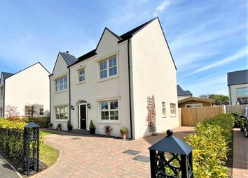 Thumbnail 4 bed detached house for sale in Plantation Drive, Limavady
