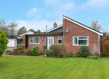 Thumbnail 2 bed detached bungalow for sale in Darvills Meadow, Holmer Green, High Wycombe