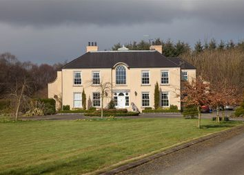 Thumbnail 6 bed detached house for sale in 6, Ballybollen Lane, Ballymena