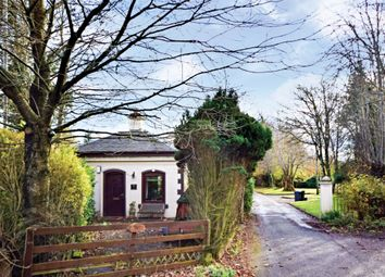 Thumbnail 1 bed detached bungalow for sale in North Lodge, Netherplace, Mauchline, East Ayrshire