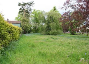 Thumbnail Property to rent in Blasford Hill, Little Waltham, Chelmsford