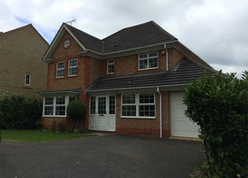 Thumbnail 4 bed detached house to rent in Pond Close, Huntingdon