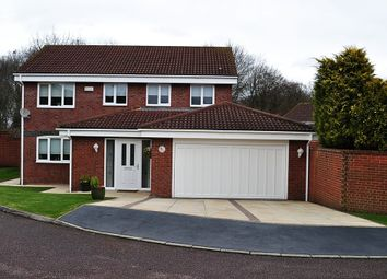 Thumbnail 4 bed detached house for sale in Romsey Close, Farnborough, Orpington