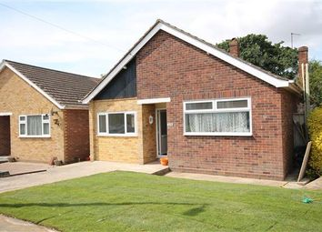 Thumbnail 3 bed bungalow for sale in Hazelwood Crescent, Little Clacton, Clacton-On-Sea