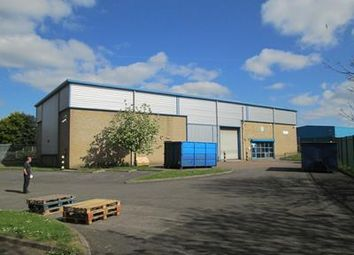 Thumbnail Light industrial for sale in 5 & 6, Ballard Court, Mill Way, Sittingbourne