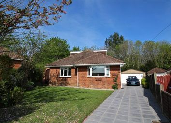 Thumbnail Detached bungalow for sale in Pines Avenue, Broadwater, Worthing