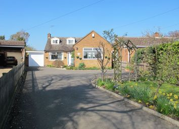 Thumbnail 4 bed bungalow for sale in Templar Way, Rothley, Leicester