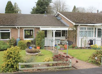 Thumbnail 2 bed terraced bungalow for sale in Brookwood Close, South Brent, Devon