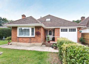 Thumbnail 4 bed detached bungalow for sale in The Triangle, Woking