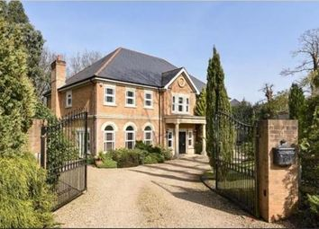 Thumbnail 5 bed detached house to rent in Stonehill Gate, Ascot, Berkshire