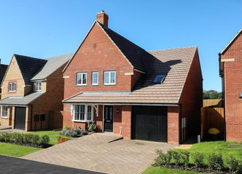 "Thumbnail 4 bedroom detached house for sale in ""Harrogate"" at Blackthorn Crescent, Brixworth, Northampton"