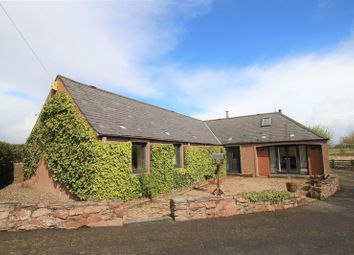 Thumbnail 4 bed cottage for sale in Inverkeilor, Arbroath