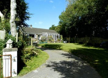 Thumbnail 3 bed detached bungalow for sale in Bryngwyn, Newcastle Emlyn