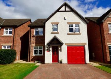 Thumbnail 4 bed detached house for sale in Callum Drive, Dumfries, Dumfries And Galloway