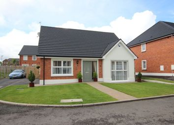Thumbnail 3 bed bungalow for sale in The Harting, Ballycraigy Road, Newtownabbey
