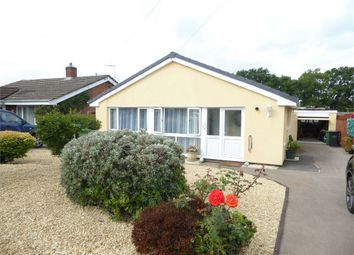 Thumbnail 3 bed detached house to rent in Wyebank Place, Tutshill, Chepstow