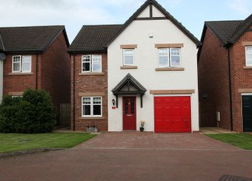 Thumbnail 4 bed detached house for sale in Callum Drive, Dumfries, Dumfries And Galloway.