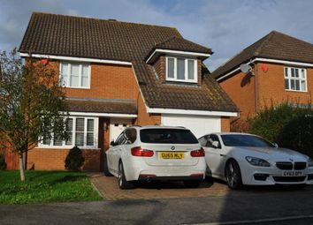Thumbnail 4 bed detached house to rent in Constantine Road, Ashford, Kent