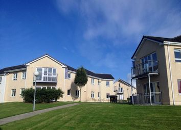Thumbnail 3 bed apartment for sale in 64 Thomond Student Village, Old Cratloe Road, Caherdavin, Limerick
