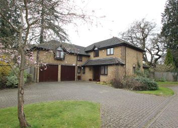 Thumbnail 5 bed detached house to rent in Arreton Mead, Horsell, Woking