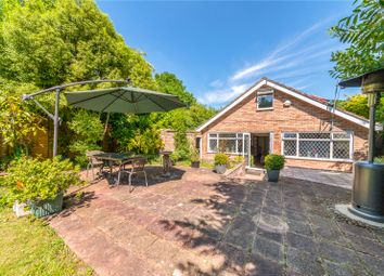 Thumbnail 4 bed bungalow for sale in Clamp Hill, Stanmore