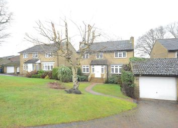 Thumbnail 4 bedroom detached house to rent in Sutherland Chase, Ascot