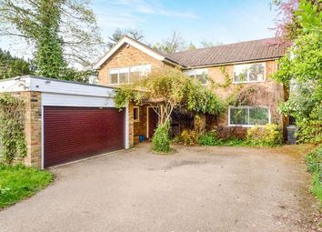Thumbnail 4 bed detached house to rent in Newlands Avenue, Radlett